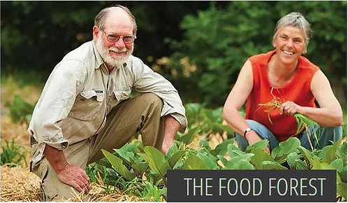 The Food Forest - Permaculture Farm & Demonstration Centre