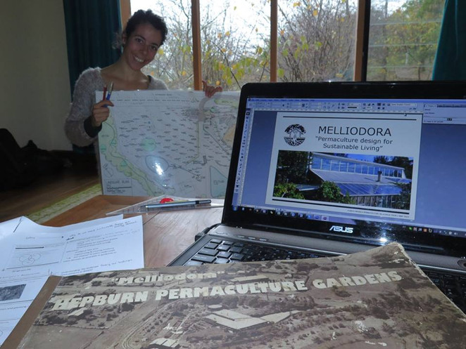 Working on Melliodora's report...