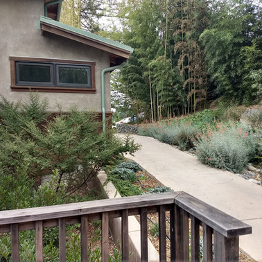Low maintenance plantings around guest housing for ecological education center