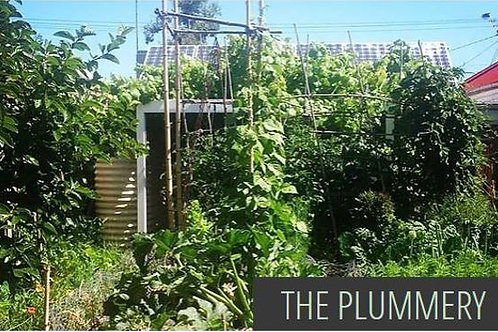 The Plummery - Urban Permaculture