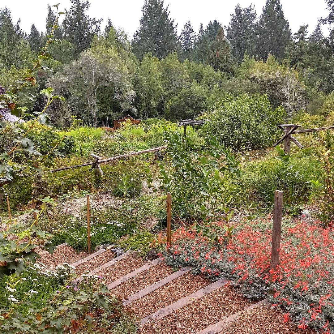 Perennial garden with winding stairway