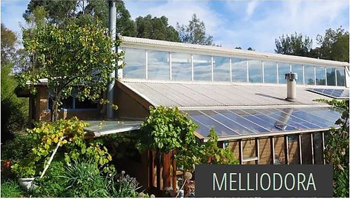 Melliodora - Permaculture Household