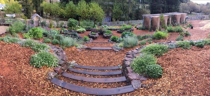 Erogonomic, water harvesting, keyhole garden
