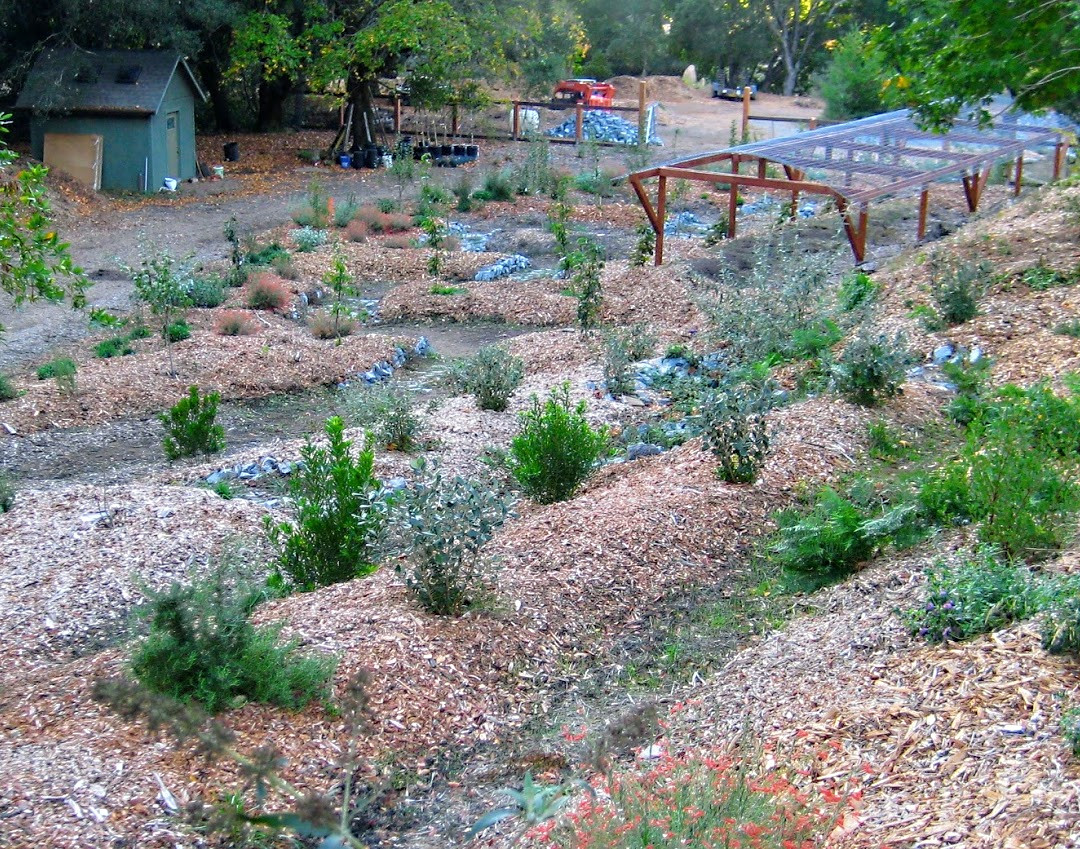 Biodiversity Orchard & Pond System to optimize Microclimates