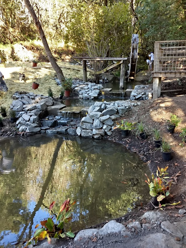Creek Restoration with Waterwheel & Waterfalls