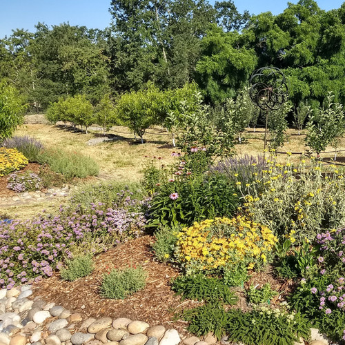 Flood mitigation orchard with beneficial bed ends