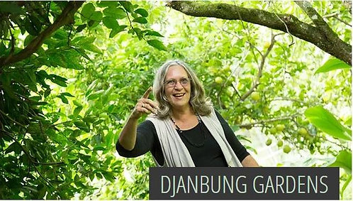 Djanbung Gardens - Permaculture College