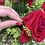 Thumbnail: H2264 - Brinco Coração Mini Liso Arredondado