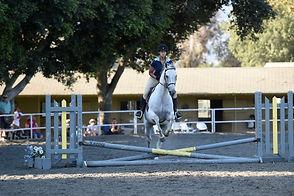 2014 Schooling show Teagan Nicole Snell Equestrian Horse English Jumping Crossrails Liz Corkett