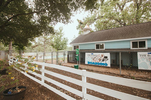 The Barkly Pet Retreat & Spa: Boarding, Grooming, Daycare, and Training Services for Dogs & Cats: Our Guest Yard
