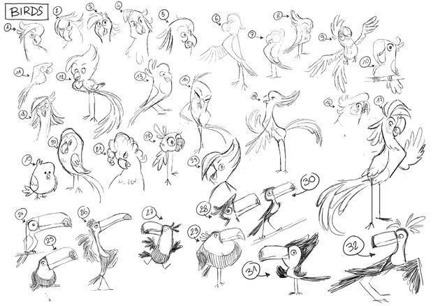 Birds draft