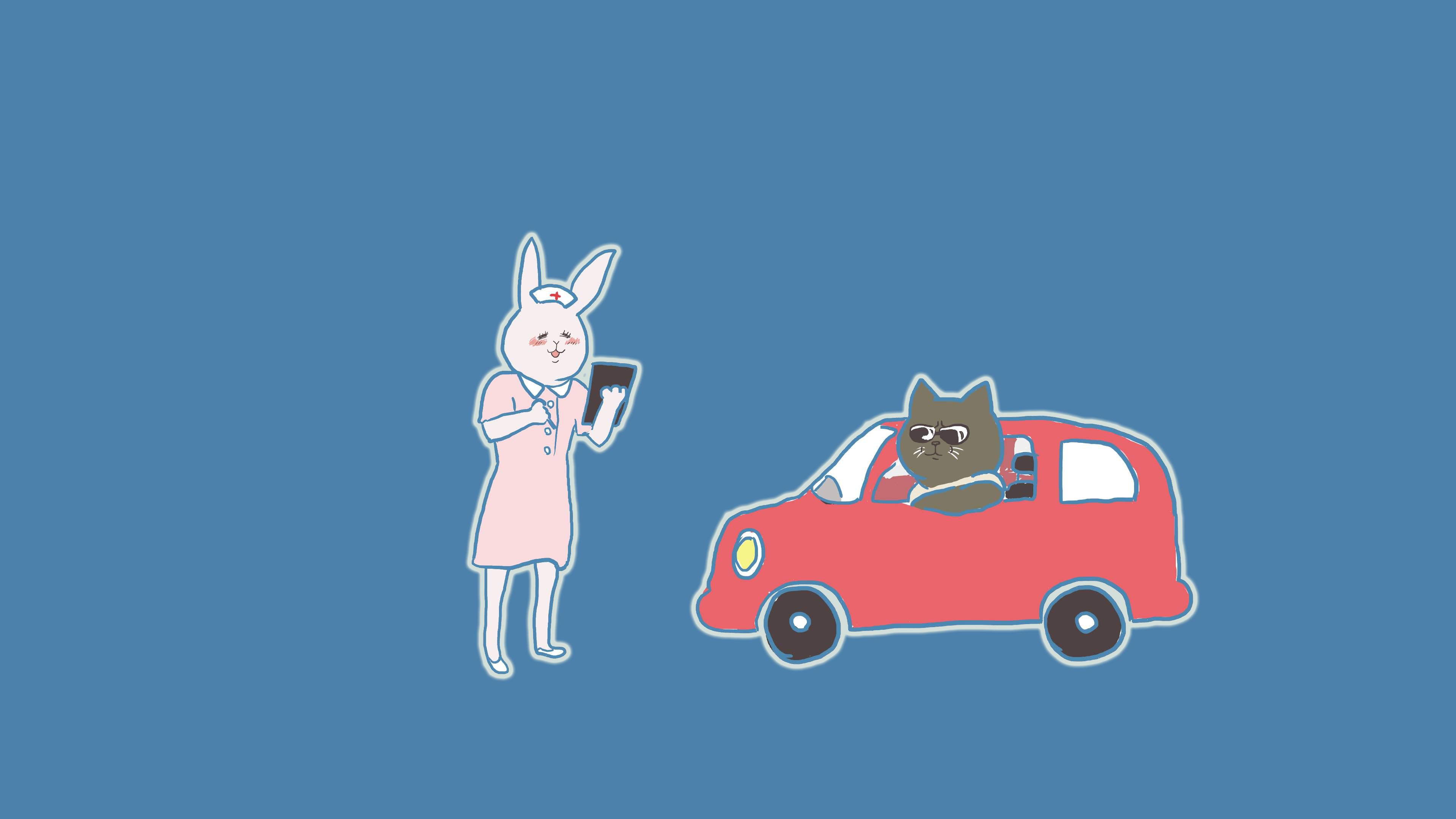 看護ウサギと車