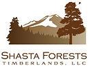 ShastaForests.jpg