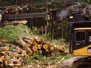 106TH PACIFIC LOGGING CONGRESS OFFICERS AND 2015 CONVENTION LOCATION AND DATES ANNOUNCED
