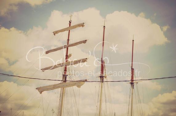 voiles_repliées,_armada,_rouen.jpg