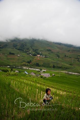 Enfant_des_rizières,_Sapa_Vietnam.jpg