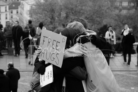 Calins_gratuits_à_Paris.jpg
