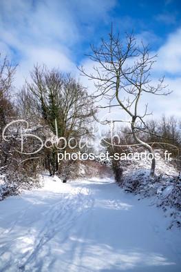 Chemin_enneigé,_Val_d'Oise,_France.jpg