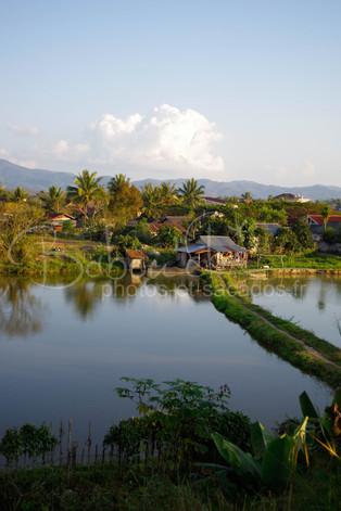 Village de Luang Nam Tha, Laos Janvier 2