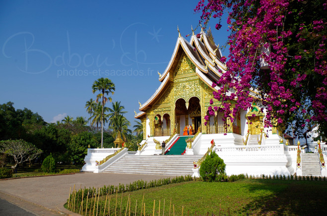 Temple Wat That, Luang Prabang, Laos.jpg