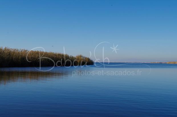 Infiniment bleu, parc naturel d'Albufera