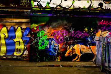 dANS LE GRAFFITIS TUNNEL, Londres.jpg