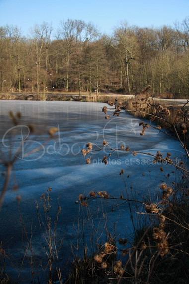 lac_gelé,_chateau_de_la_chasse,_val_d'o