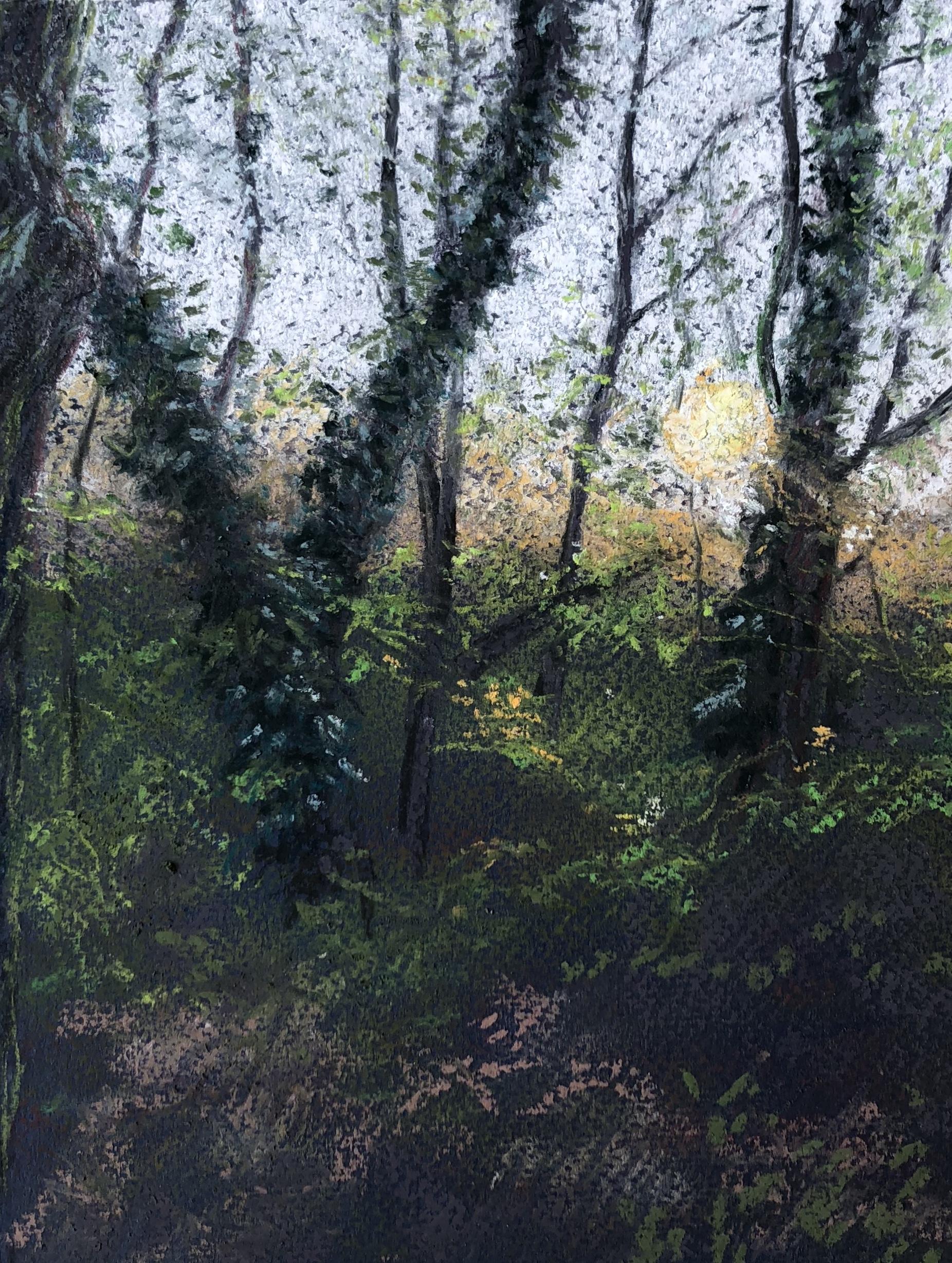 Wandsworth Common - dawn