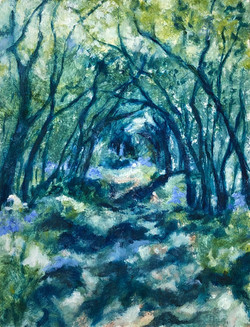 Bluebell Alley (Box Hill)