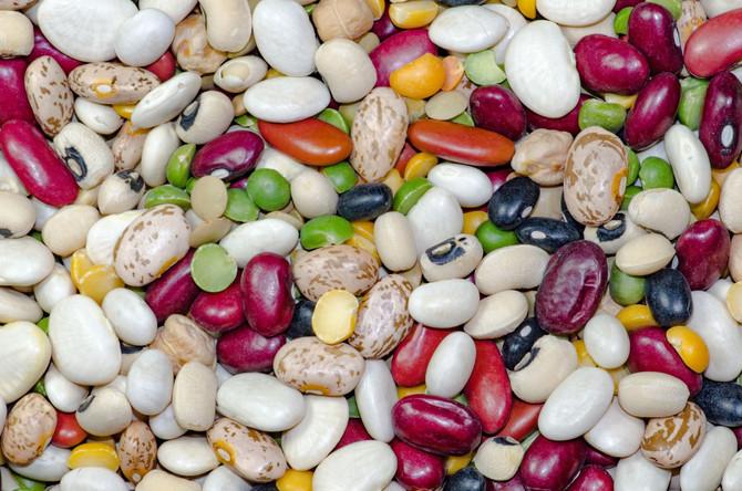 O čočce, fazolích a spol.
