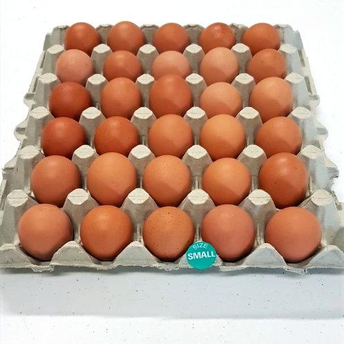 Small Free Range Eggs