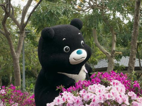 熊讚邀請Hello Kitty 一起到台北賞杜鵑花季