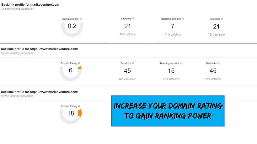 Domain Rating.jpg