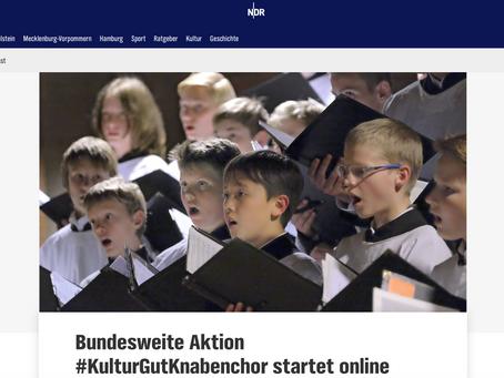 NDR Kultur: Bundesweite Aktion #KulturGutKnabenchor startet online