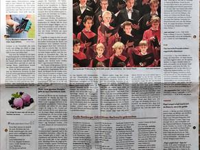 Artikel im Hamburger Abendblatt 15.06.2019