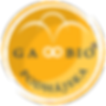logo_gabio_transp_top.png
