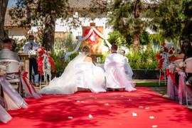 Our Wedding-231.JPG