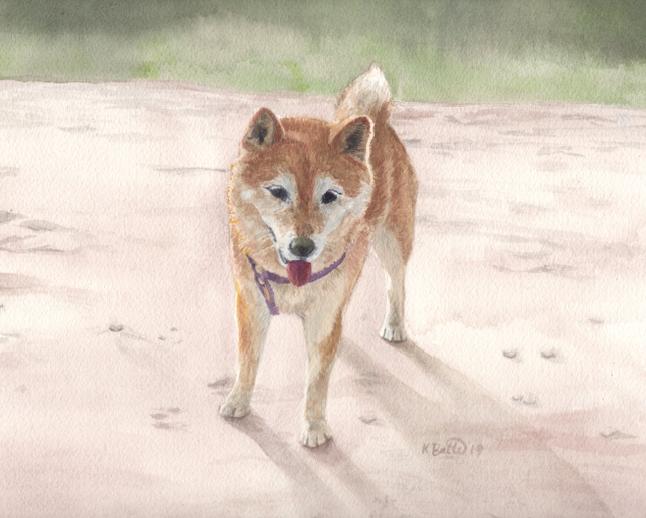 Pet Portrait Painting  12/2019