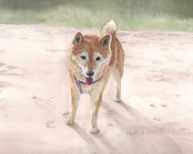 Pet Portrait Painting  12/2019