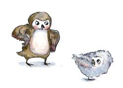 Owls spot 3