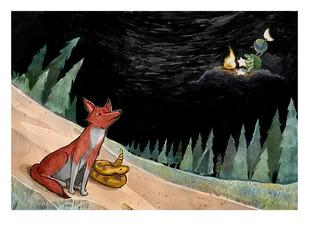 Coyote Origin Story