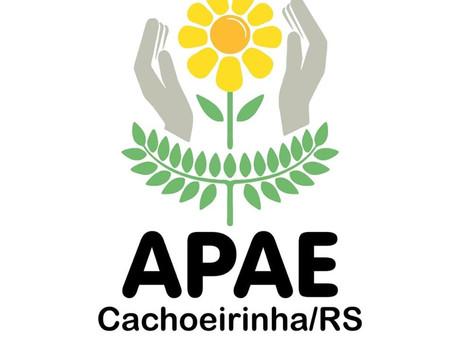 Associação de Pais e Amigos dos Excepcionais (APAE)