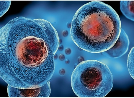 My Son Got Stem Cells for Long-Haul Covid - And They Worked