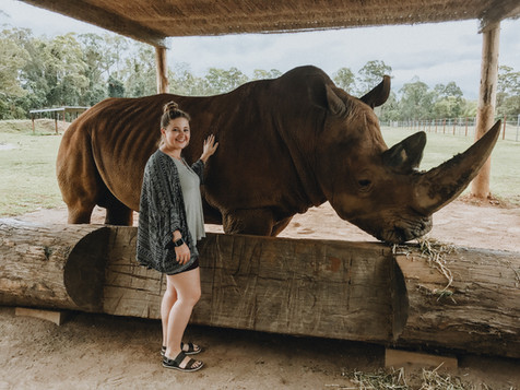Meeting DJ the Rhino at Steve Irwin's Zoo in Australia