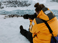Photographing a penguin colony in Antarctica