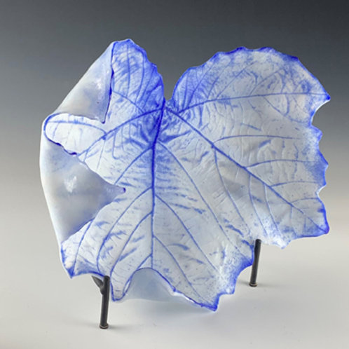 Large Sycamore leaf
