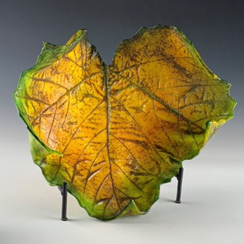 Large Sycamore leaf