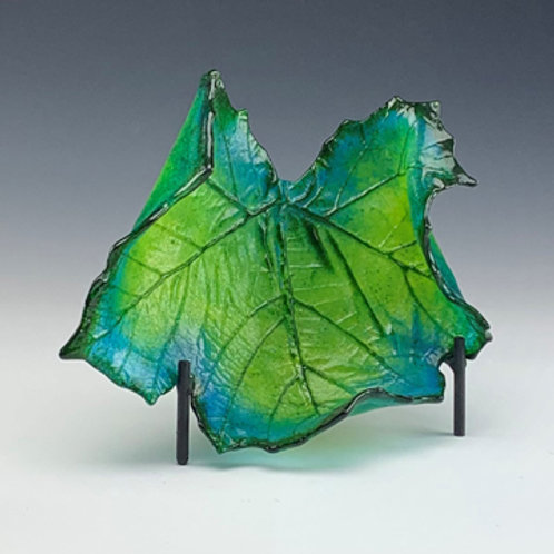 Medium Sycamore leaf