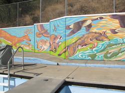 Kendrick Public Swimming Pool