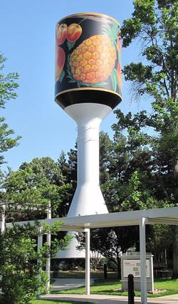 Libby's Water Tank, Sunnyvale, CA